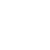 celtic logo badge